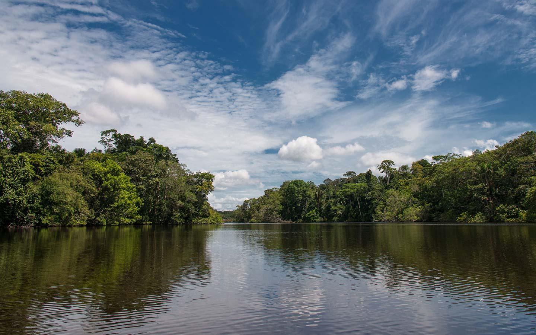 amazon, rainforest, ecuador, wildlife, adventure
