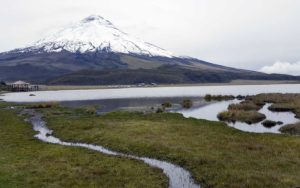 Cotopaxi National Park Tour – Full Day