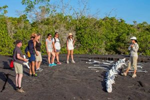 Galapagos Day Tours