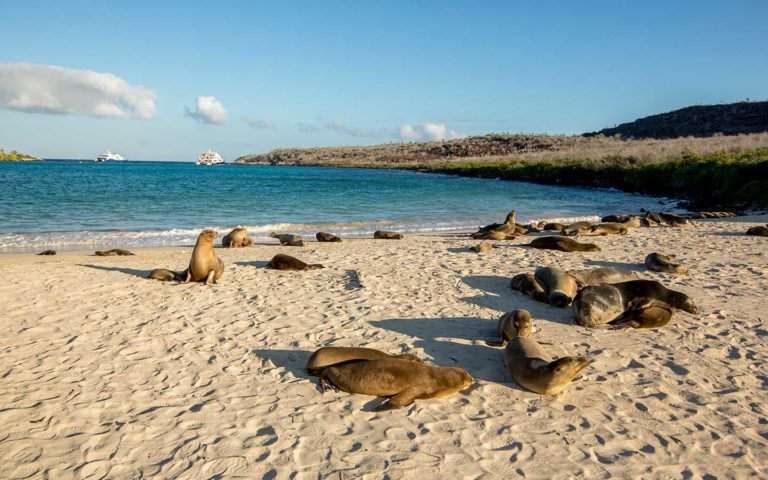 Galapagos Land Tours and Family Adventures