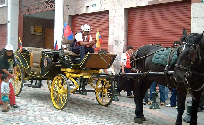 quito-horse-cart