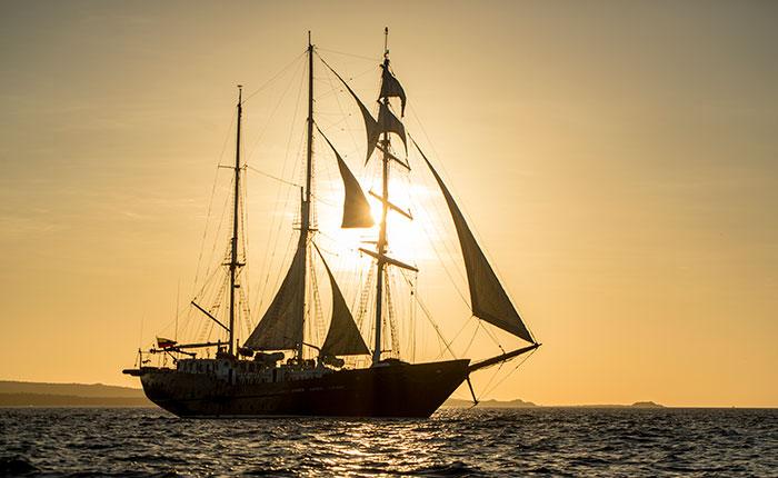 Sailing Ship Mary Anne