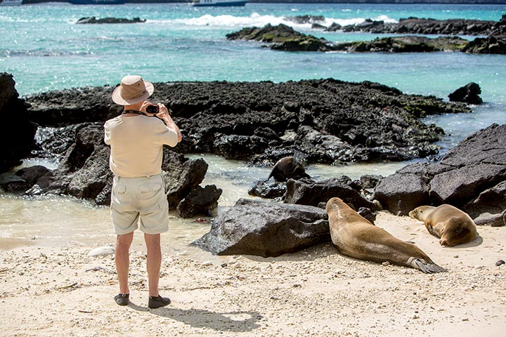wildlife-hopping-galapagos