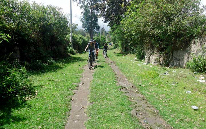 chicocha-biking-forest