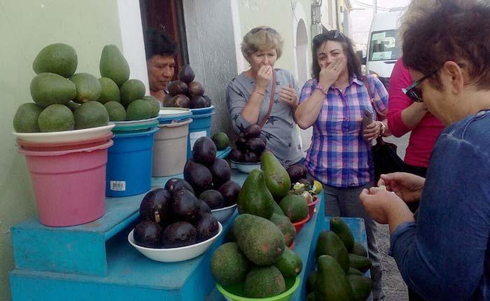 cuenca-avocado