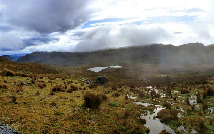 inca-trekking-wild