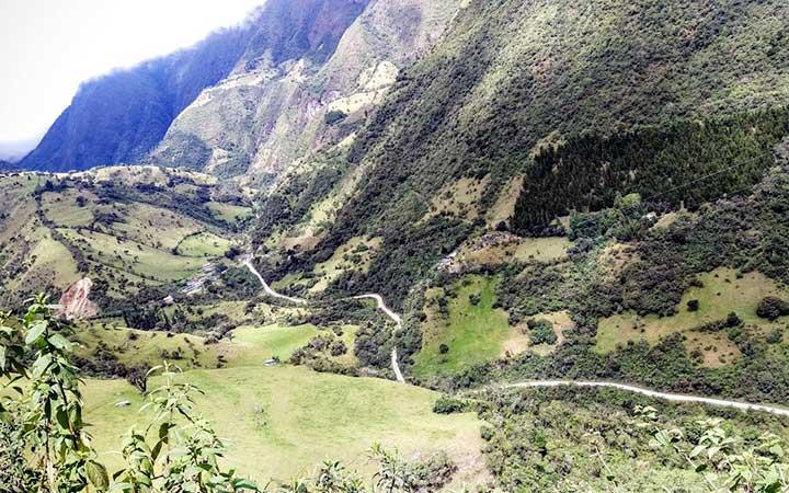 mindo-biking-forest