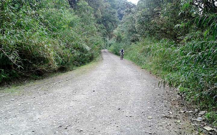 mindo-biking-road
