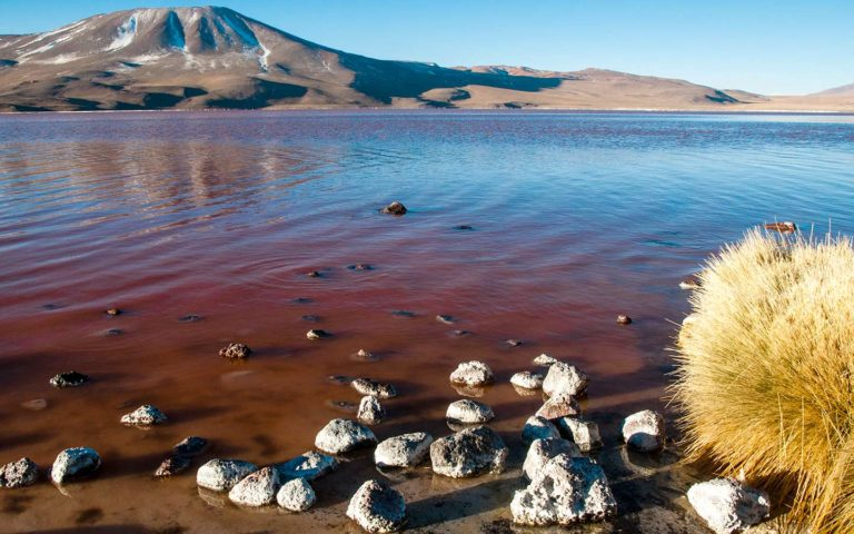 Bolivia Andean Lagoons