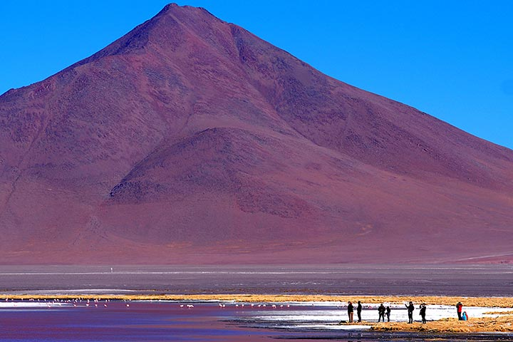 bolivia-andean-red-lagoon