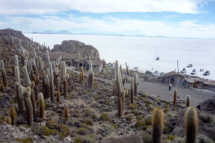 incahuasi-desert-viewpoint