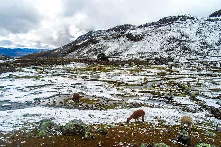 salkantay-snow-valley